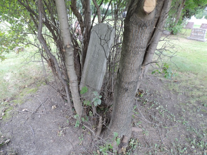 C:\Users\Vern\Pictures\Historical\Fort Hill Cemetery\2017-08-19 Fort Hill Cemetery Headstones\Grover, Nancy R12-220 4467.JPG