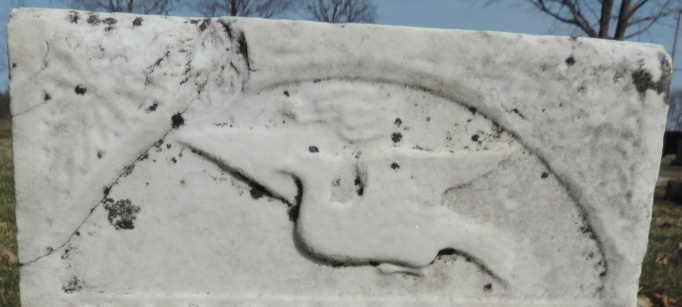 C:\Users\Vern\Pictures\Historical\Fort Hill Cemetery\COMBINED FORT HILL PHOTOS\Fort Hill gravestone symbols\Flying bird - Virginia Wright.JPG