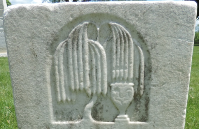 C:\Users\Vern\Pictures\Historical\Fort Hill Cemetery\COMBINED FORT HILL PHOTOS\Fort Hill gravestone symbols\Willow Tree w vase - Warren Scovill.JPG